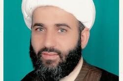المنهج السياسي عند أهل البيت (ع) إطلالة على كتاب العلامة السيد علي الأمين : الأحزاب الدينية
