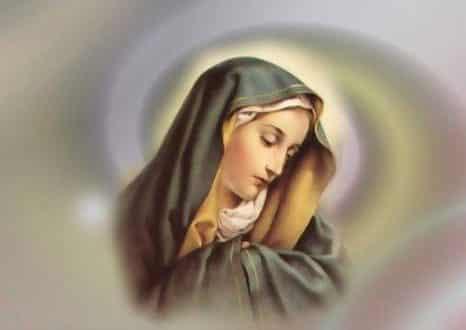 الامين | السيدة مريم العذراء عليها السلام